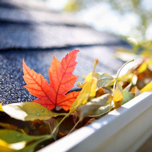 clear the gutters around your home